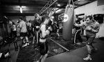 Latrobe Boxing Club 2