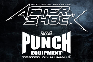 Aftershock Mma Punch Equipment