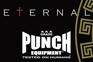 Eternal Mma Punch Equipment