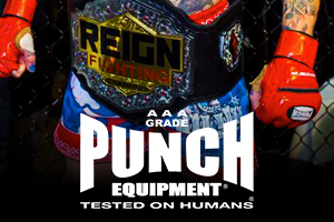 Reign Fighting Mma Punch Equipment