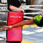 Lifestyle Group X Kick Shield