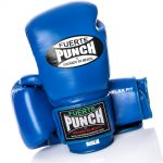 Punch Mexican Blue Boxing Gloves 12oz