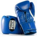 Punch Mexican Blue Boxing Gloves 2 2020