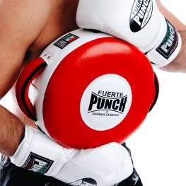 punch-mexican-boxing-shield
