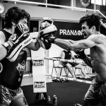 Shooto Gloves 1