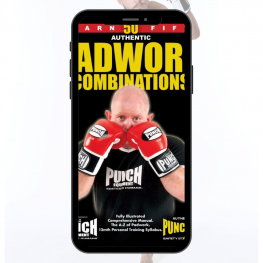 boxing-ebook-combinations