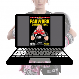 ebook-boxing-combos