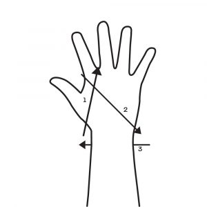 Wrist Wrap Index Finger X