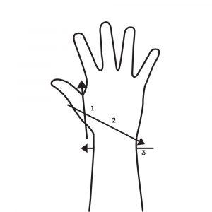 Wrist Wrap Thumb X