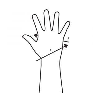 Wrist Wrap Wrist To Knuckles