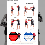 Page from Thai pad combinations EBook