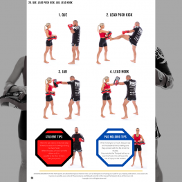 thaipadwork-boxing-combinations-ebook-4